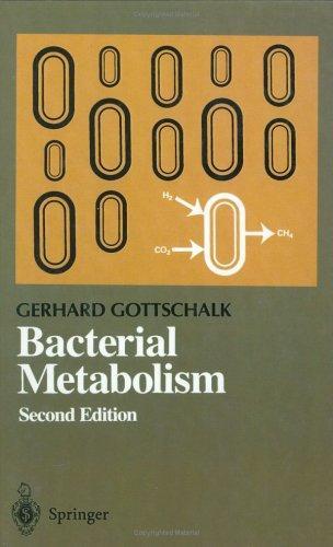 Download Bacterial metabolism