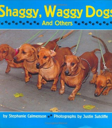 Download Shaggy, waggy dogs (and others)