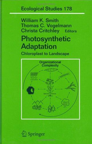 Photosynthetic adaptation by